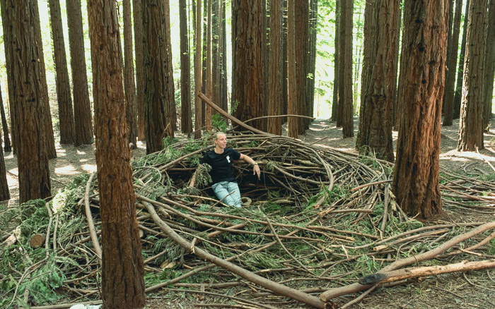discover the redwood forest in east warburton 2018 humble trail